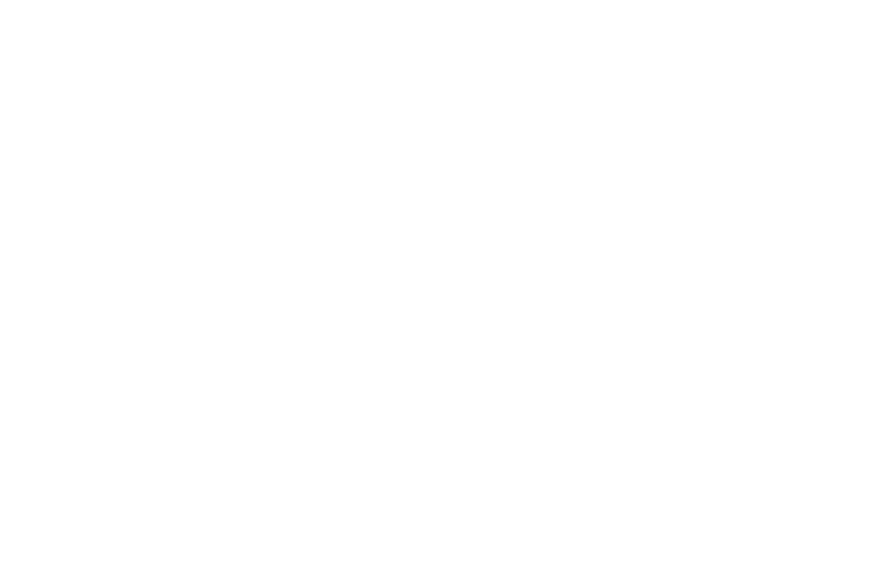 OFFICIAL SELECTION - STIFF Seattle True Independent Film Festival - 2020 (4)